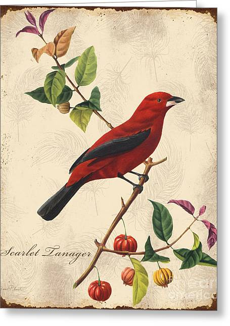 Parrot Art Print Greeting Cards - Vintage Bird Study-E Greeting Card by Jean Plout