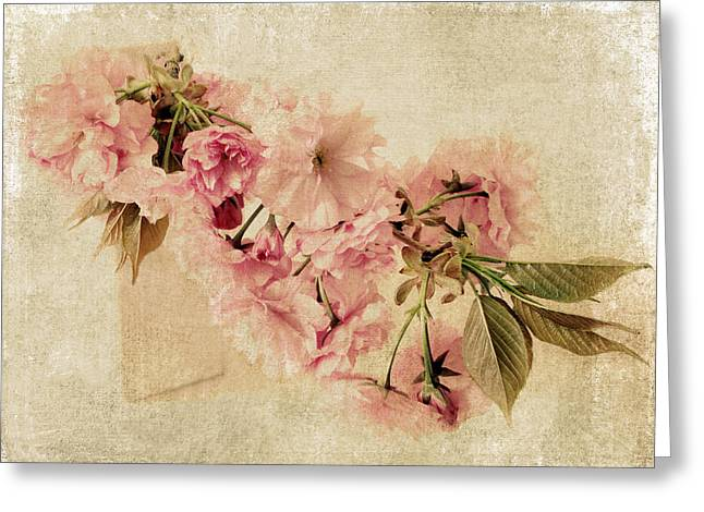 Texture Floral Greeting Cards - Vintage Blossom Greeting Card by Jessica Jenney