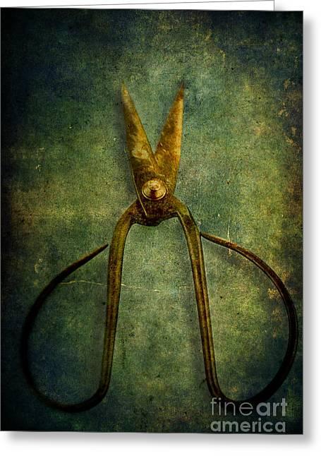 Scissors Greeting Cards - Vintage Scissors Greeting Card by Stephanie Frey