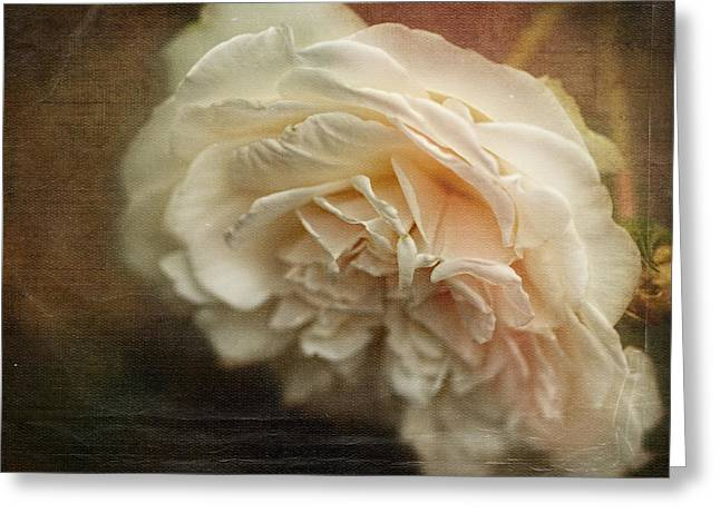 White Digital Greeting Cards - Vintage Tea Rose Greeting Card by Terry Fleckney