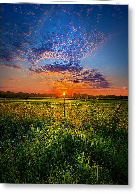 Recently Sold -  - Scenic Greeting Cards - Visions Greeting Card by Phil Koch