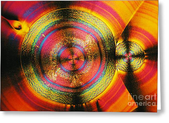 Polarized Greeting Cards - Vitamin C Greeting Card by James M. Bell
