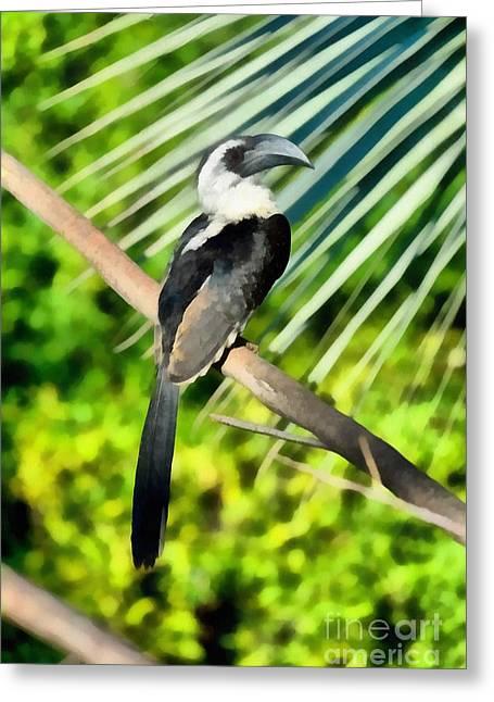 Hornbill Paintings Greeting Cards - Von Den Deckers Hornbill Greeting Card by George Atsametakis