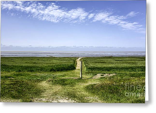 Wadden Sea Greeting Cards - Wadden sea from the island Mando Denmark Greeting Card by Frank Bach