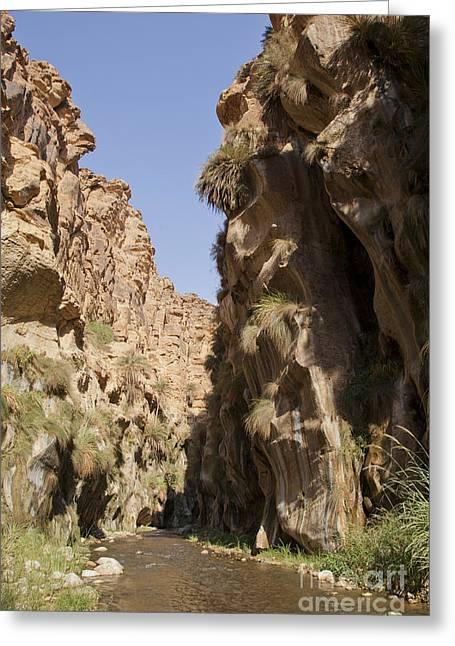 Jordan Photographs Greeting Cards - Wadi Hassa Greeting Card by Eyal Bartov