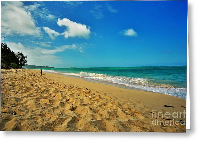 Snorkel Greeting Cards - Waimanalo Beach Greeting Card by Cheryl Young
