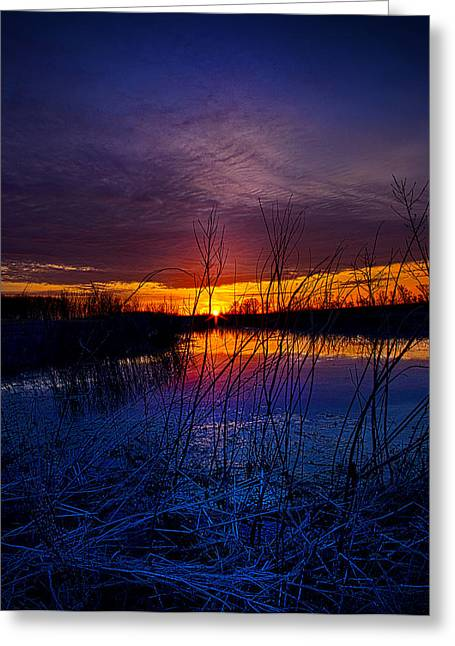 Geographic Greeting Cards - Waking Greeting Card by Phil Koch