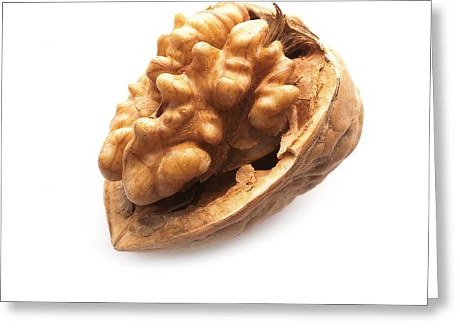 Walnut Half In A Shell Greeting Card by Science Photo Library