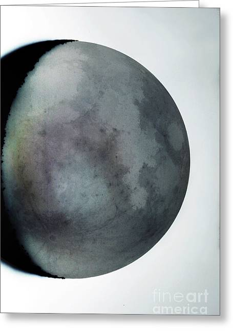 Inverted Color Greeting Cards - Waning Crescent Moon With Earthshine Greeting Card by John Chumack