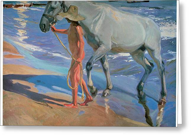 The Horse Greeting Cards - Washing the Horse Greeting Card by Joaquin Sorolla Y Bastida