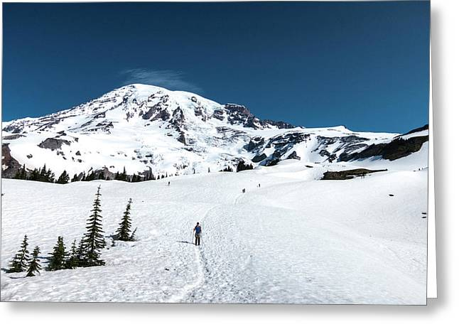 Washington, Mount Rainier Greeting Card by Matt Freedman
