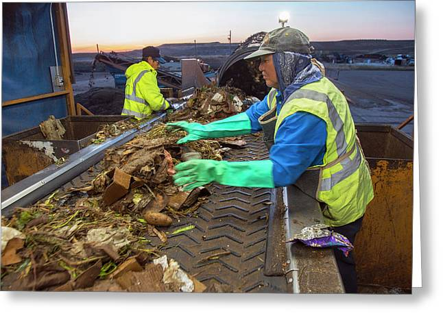 Waste Sorting At Composting Facility Greeting Card by Peter Menzel