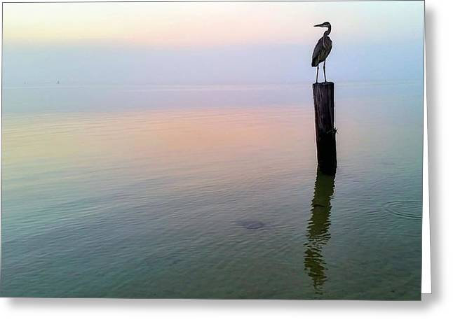 Best Sellers -  - Foggy Beach Greeting Cards - Watching over Pensacola Bay Greeting Card by JC Findley