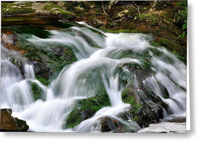 Fishing Creek Greeting Cards - Water Fall 1 Greeting Card by Todd Hostetter