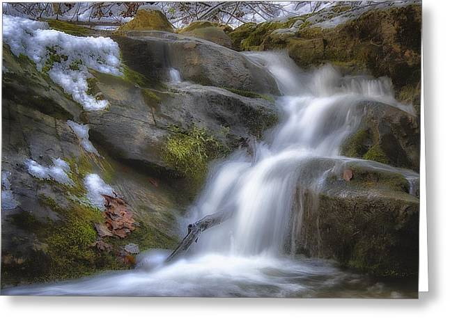 Beautiful Creek Greeting Cards - Water in Motion Greeting Card by Steve Hurt