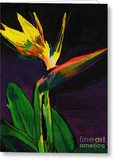 Water Lilly Pastels Greeting Cards - Paradise bird Flower Greeting Card by Mary Wismer