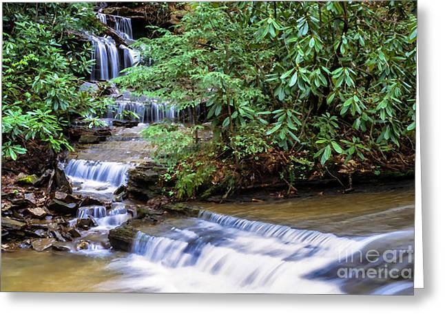 Rhododendron Maximum Greeting Cards - Waterfall Birch River Greeting Card by Thomas R Fletcher