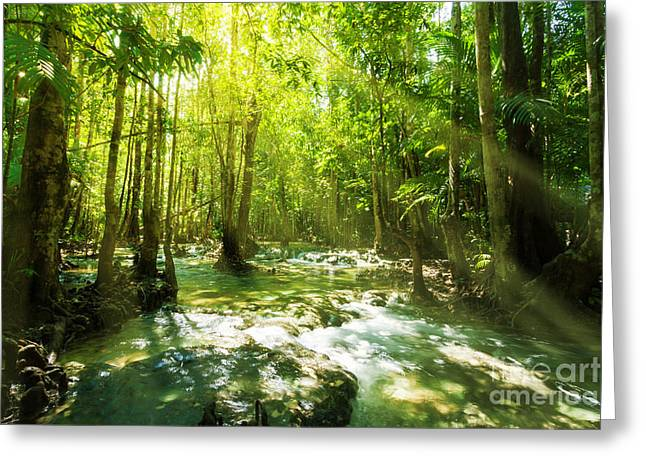 Mangrove Forests Greeting Cards - Waterfall In Rainforest Greeting Card by Atiketta Sangasaeng