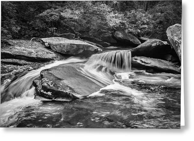 Black Rock Yellow Leaves Water Greeting Cards - Waterfalls Great Smoky Mountains Painted BW  Greeting Card by Rich Franco