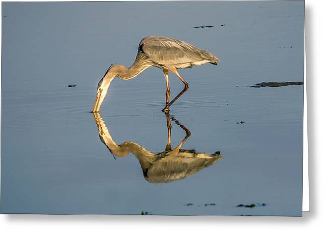 Stream Digital Art Greeting Cards - Watering Hole Greeting Card by Rob Sellers