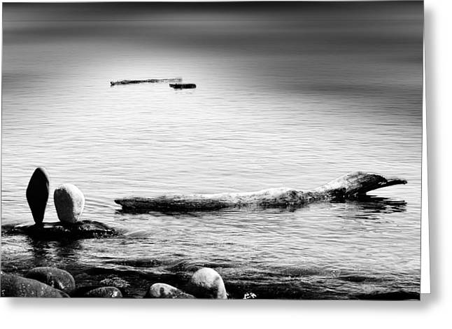 Photographers Duluth Greeting Cards - We Watch Greeting Card by Matthew Blum