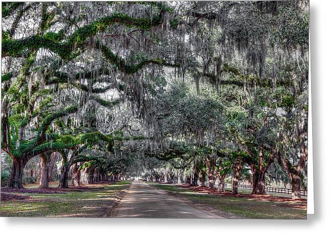 Boone Hall Greeting Cards - Welcome to Boone Hall Greeting Card by Walt  Baker