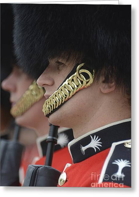 Straps Greeting Cards - Welsh Guards Stand In Formation Greeting Card by Andrew Chittock