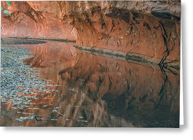 West Fork Greeting Cards - West Fork Reflection Greeting Card by Tam Ryan