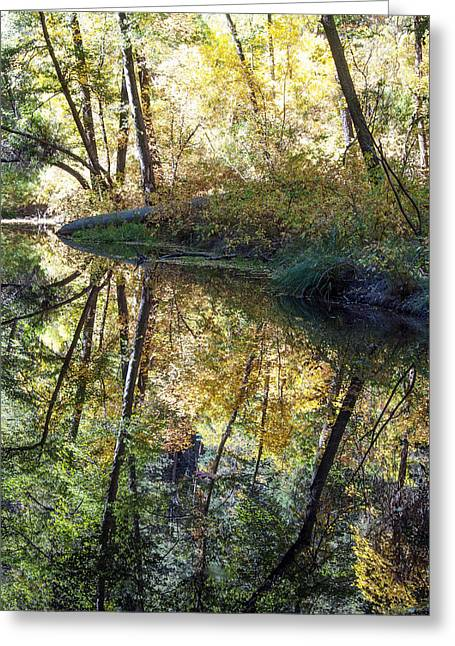 West Fork Greeting Cards - West Fork Reflections Greeting Card by Tam Ryan