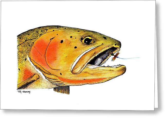 Flyfishing Pastels Greeting Cards - Westslope Cutthroat Trout Head Study Greeting Card by Tim Shoales
