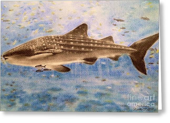 Whale Pastels Greeting Cards - Whale Shark Greeting Card by Keiko Olds