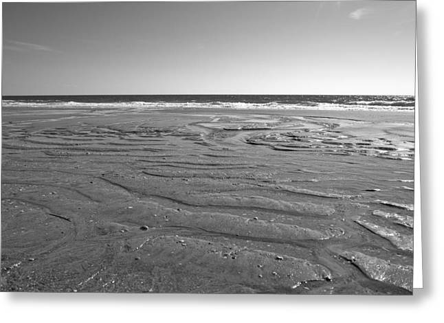 Ocean Shore Greeting Cards - While the Tide is Out Greeting Card by Betsy C  Knapp