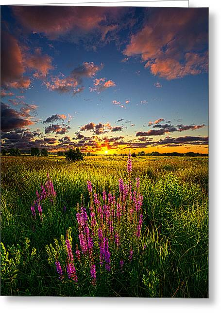 Geographic Greeting Cards - Whispers Greeting Card by Phil Koch
