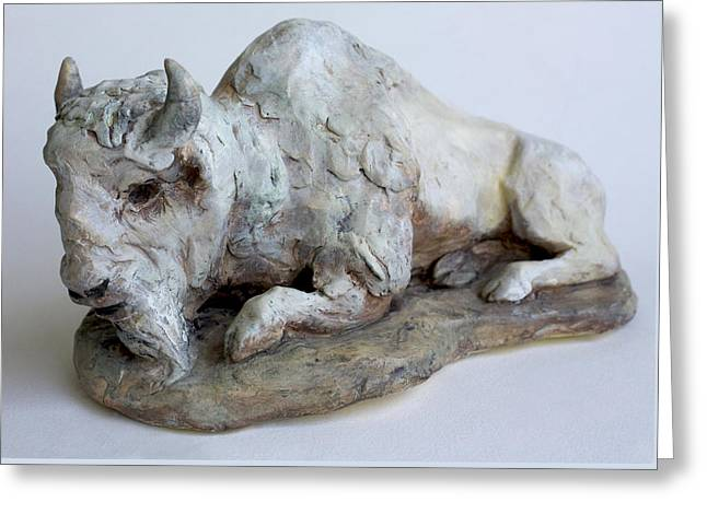 Sculpture. Ceramics Greeting Cards - White Buffalo-Sculpture Greeting Card by Derrick Higgins