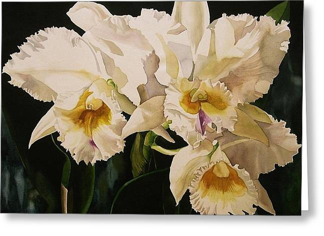 Cattleya Greeting Cards - White Cattleya Orchids Greeting Card by Alfred Ng