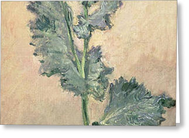White Poppy Greeting Card by Claude Monet