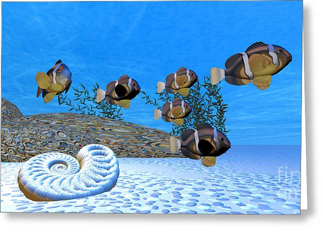 Yellowtail Clownfish Greeting Cards - White Sands Greeting Card by Corey Ford