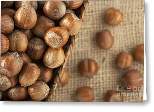 Edible Greeting Cards - Whole Hazelnuts Greeting Card by Charlotte Lake