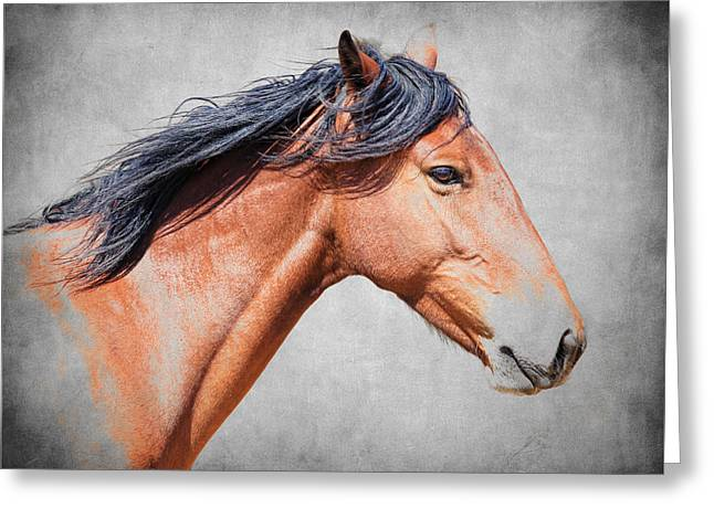 Horse In Water Paint Greeting Cards - Wild Beauty Greeting Card by Steve McKinzie