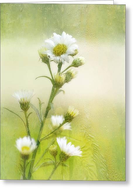 Joan Bertucci Greeting Cards - Wild Flowers Greeting Card by Joan Bertucci