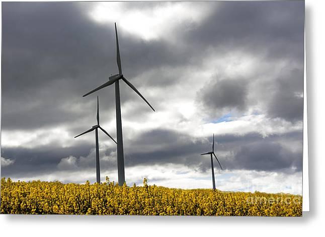 Alternative Energy Greeting Cards - Wind turbines Greeting Card by Bernard Jaubert