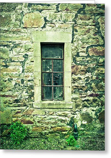Glass Wall Greeting Cards - Window Greeting Card by Tom Gowanlock
