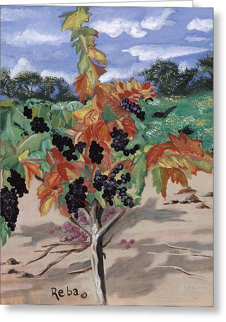 Napa Valley And Vineyards Paintings Greeting Cards - Wine Country Greeting Card by Reba Baptist