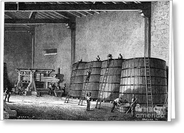 Great Wine Greeting Cards - Wine Production, 19th Century Greeting Card by CCI Archives
