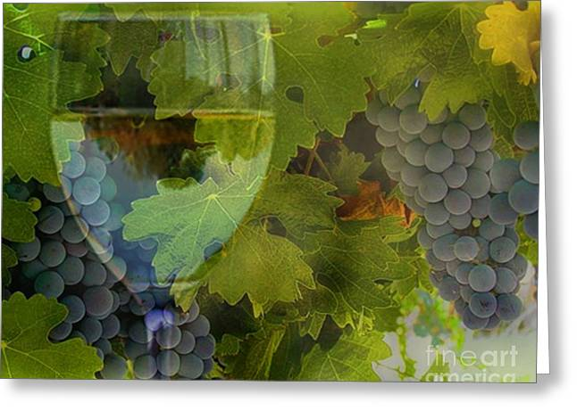 Wine Greeting Card by Stephanie Laird