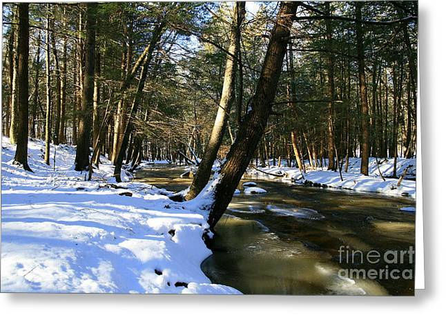 Union Connecticut Greeting Cards - Winter Brook  Greeting Card by Neal  Eslinger
