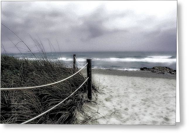 Sea Oats Greeting Cards - Winter Day at the Beach Greeting Card by Julie Palencia