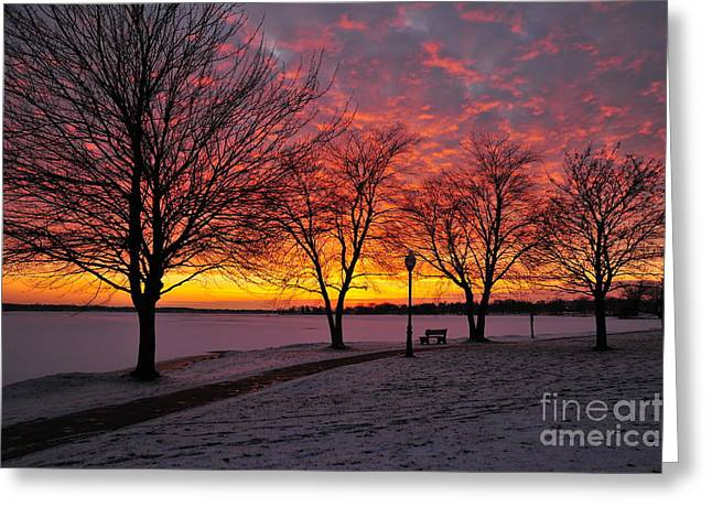 Skyscape Greeting Cards - Winter Evening Greeting Card by Terri Gostola