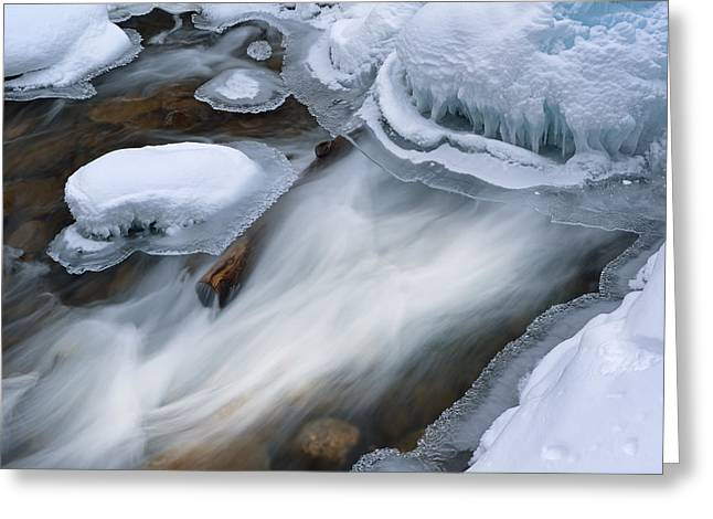 Beautiful Creek Greeting Cards - Winter Gull Creek Cascade Greeting Card by Dean Pennala