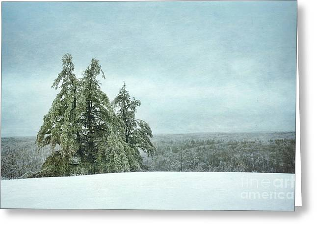 Winter Travel Photographs Greeting Cards - Winter Greeting Card by HD Connelly